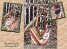 Monatsprojekt Februar 2011 - eine Tasche